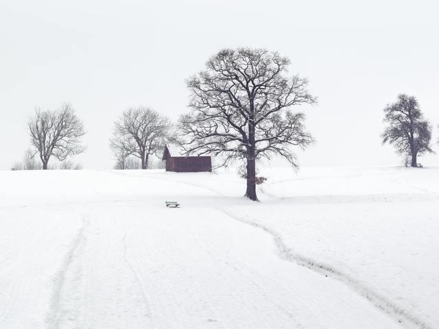 コールドゲームの雪山