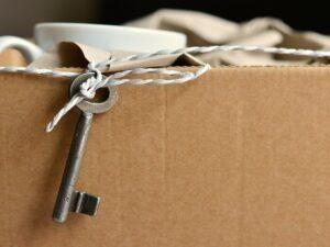 ハコヅメの意味とは?箱に詰めるだけじゃないよねってことで調査!